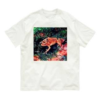 Fantastic Frog -Tropical Version- Organic Cotton T-shirts