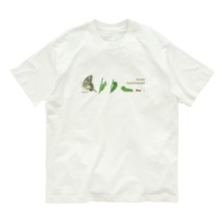 Asian Swallowtail Organic Cotton T-shirts