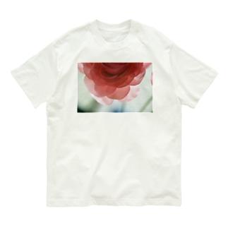 renoncule Organic Cotton T-shirts