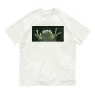 ガラス向こうにカエル Organic Cotton T-shirts
