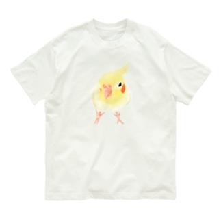 オカメインコ おすましルチノー【まめるりはことり】 Organic Cotton T-shirts