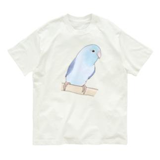 おしゃまなマメルリハのるりちゃん【まめるりはことり】 Organic Cotton T-shirts