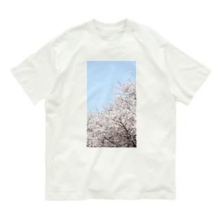 桜 Organic Cotton T-Shirt