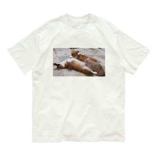 何をしても起きないコーギー Organic Cotton T-Shirt