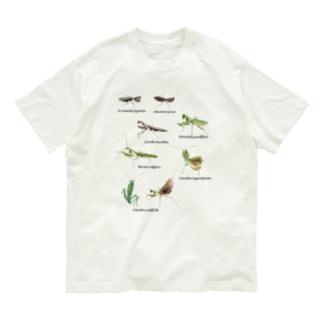 関東のカマキリ(背景透過ver) Organic Cotton T-shirts