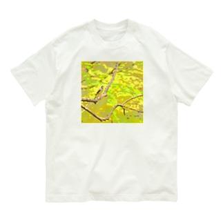 春の林  ~イカル~ Organic Cotton T-shirts