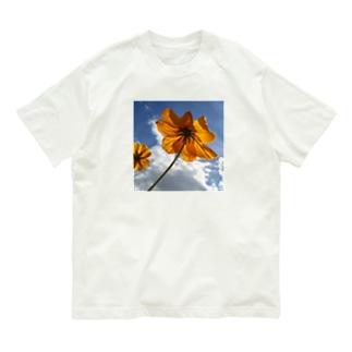花模様  キバナコスモスA Organic Cotton T-shirts