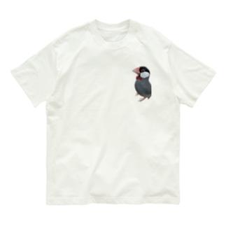 おすましな文鳥さん Organic Cotton T-shirts