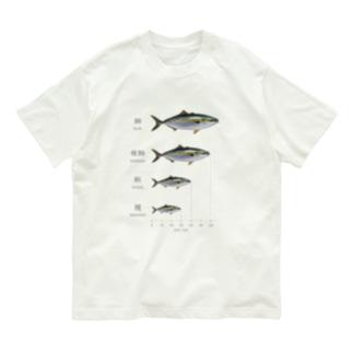 出世魚「鰤(ブリ)」 ver.関東 Organic Cotton T-shirts