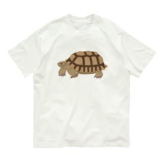 けづめりくがめさん 文字なし Organic Cotton T-shirts