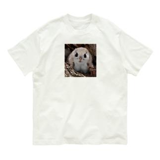 【にこらび】毎日が特別になる◇エゾモモンガ202106 Organic Cotton T-shirts