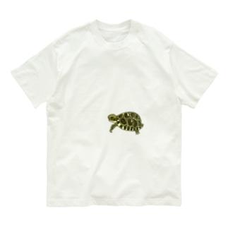 リクガメハイハイ Organic Cotton T-shirts