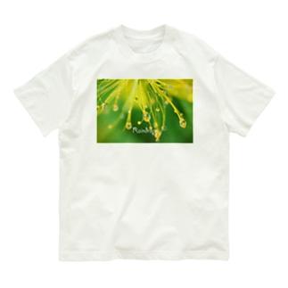 ビョウヤナギ Organic Cotton T-shirts
