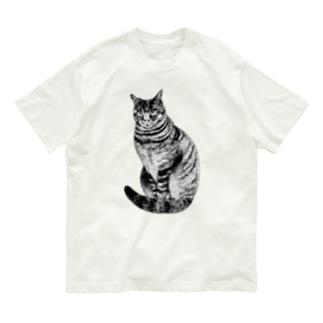 midoriyamadaのこっちを見ているキジトラ猫 Organic Cotton T-Shirt