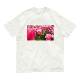 ぴかぴかチューリップ Organic Cotton T-shirts