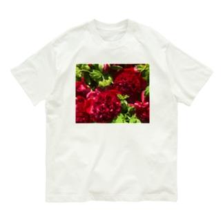 オブしゃくやく Organic Cotton T-shirts