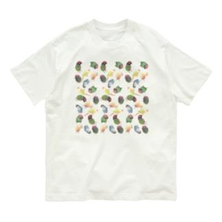 まめるりはことりのたっぷりウロコインコちゃん【まめるりはことり】 Organic Cotton T-Shirt