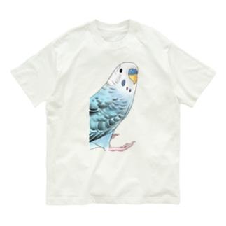 振りむきセキセイインコちゃん【まめるりはことり】 Organic Cotton T-shirts