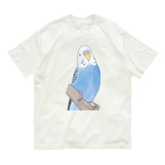 セキセイインコちゃんと止まり木【まめるりはことり】 Organic Cotton T-shirts