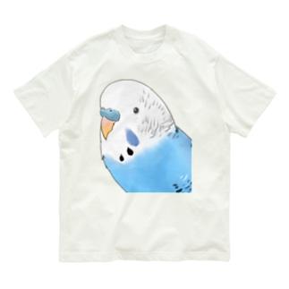 見つめるセキセイインコちゃん【まめるりはことり】 Organic Cotton T-shirts
