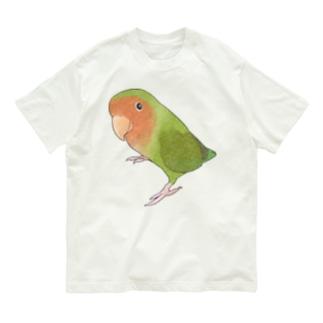 見つめるコザクラインコちゃん【まめるりはことり】 Organic Cotton T-shirts