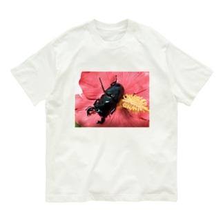 クワガタ ☆タランドゥス☆3 Organic Cotton T-Shirt
