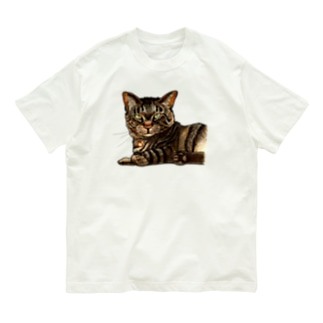 キジ柄の猫がこちらをみている Organic Cotton T-Shirt