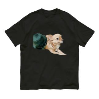きらら Organic Cotton T-shirts