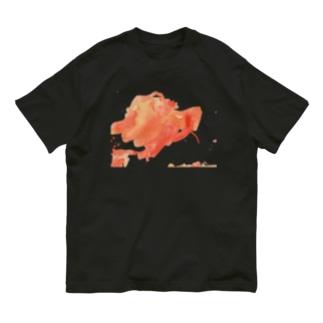 絵具 Organic Cotton T-shirts