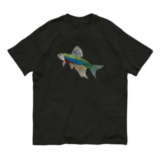 オイカワです‼️ Organic Cotton T-Shirt