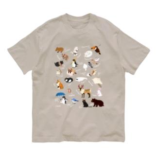 アニマルズ Organic Cotton T-shirts