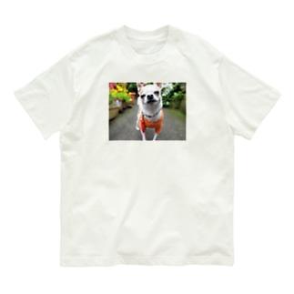 カラフルチワワ(フラワー) Organic Cotton T-shirts