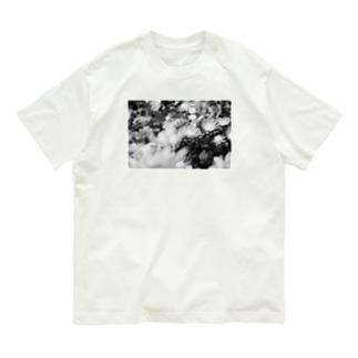 モノクロフラワー(キク) Organic Cotton T-shirts