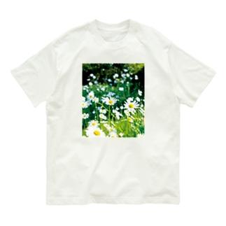 癒しの風景(シャスタデイジー) Organic Cotton T-shirts