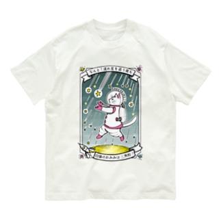 なんと三角 流星群 Organic Cotton T-shirts