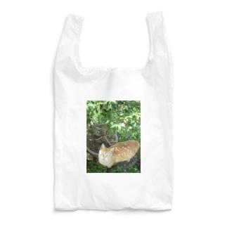 トロワ イラスト&写真館の美人さんのチャトラ Reusable Bag