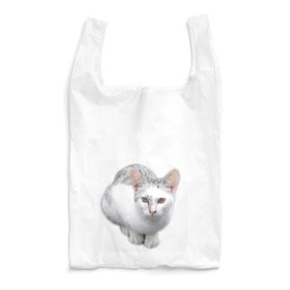 カッコイイ!猫ちゃん Reusable Bag