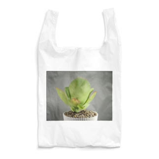 多肉植物A Reusable Bag