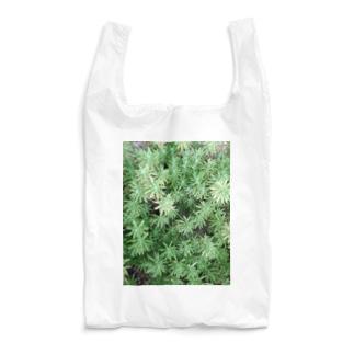 セダム Reusable Bag