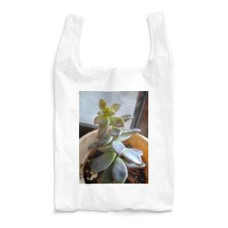 多肉植物 Reusable Bag