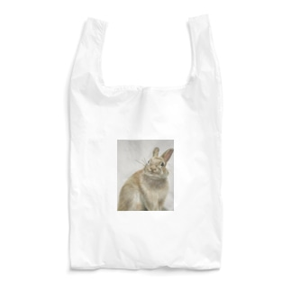 PonZ Reusable Bag