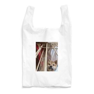 柴犬がのぞき込むとき… Reusable Bag