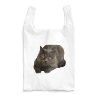 どちらさまですか?TANUKI Reusable Bag