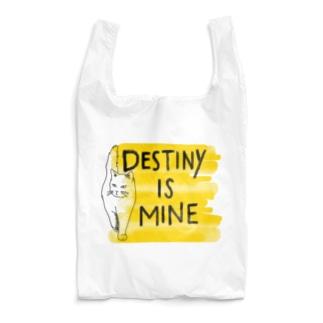 DESTINYisMINE Reusable Bag