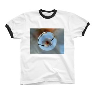 光景 sight737 梅  花 FLOWERS  宙玉(そらたま) リンガーTシャツ