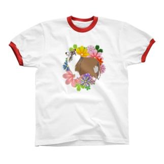 癒し系コリーさん リンガーTシャツ