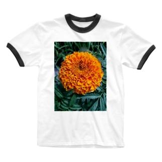 ポンポン咲きっ!! Ringer T-shirts