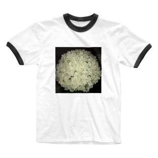 6月 Ringer T-shirts