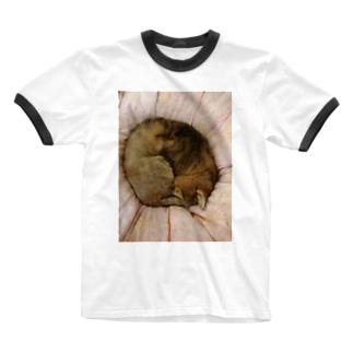 家の猫アンモナイト型 Ringer T-shirts