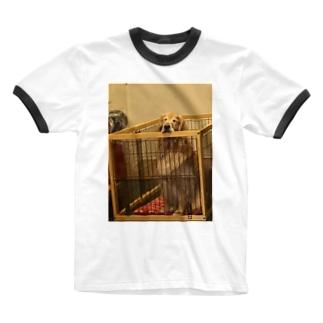 うちの犬 Ringer T-shirts